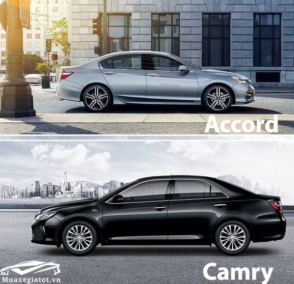 honda-accord-vs-toyota-camry-2019-hong-xe