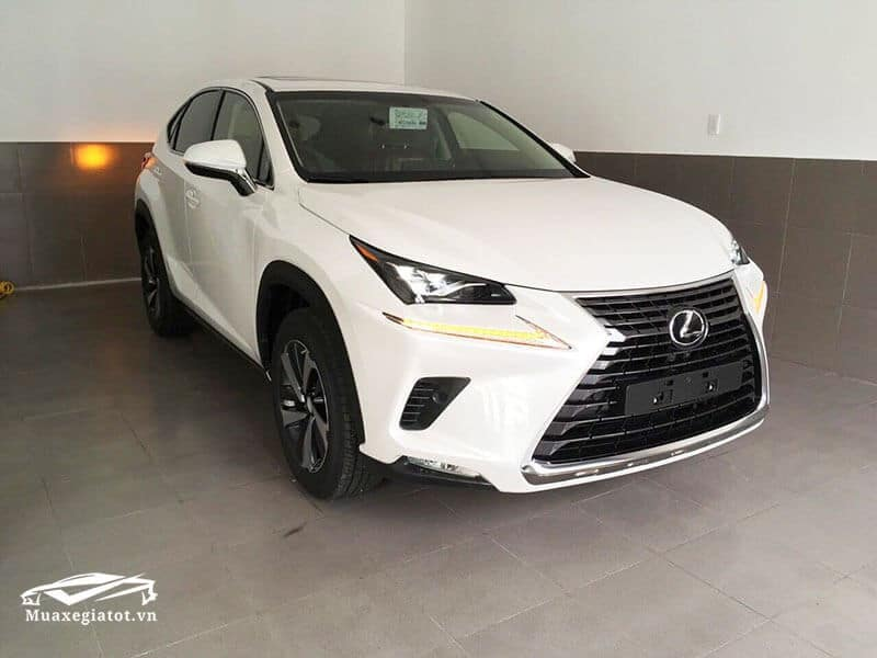 dau-xe-Lexus-nx300-2020-truecar-vn
