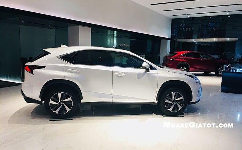 xe-Lexus-nx300-2020-truecar-vn